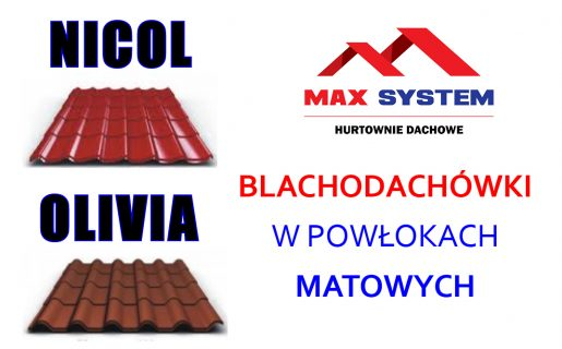 reklamy 2018 max system6